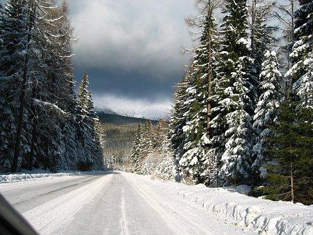 雪道に強い車